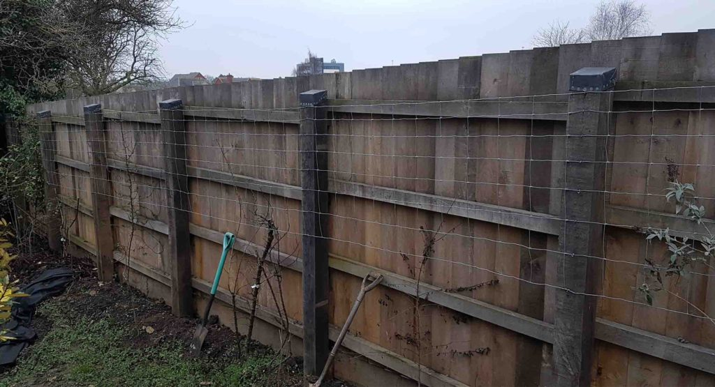 picture showing oak feather boarded fence, half weathered and turning silver in colour
